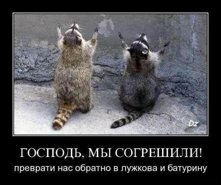 1263654102_1263374153_demotivator_52.jpg.e4e783f14ca9b78a3b06e0cacb71deb2.jpg