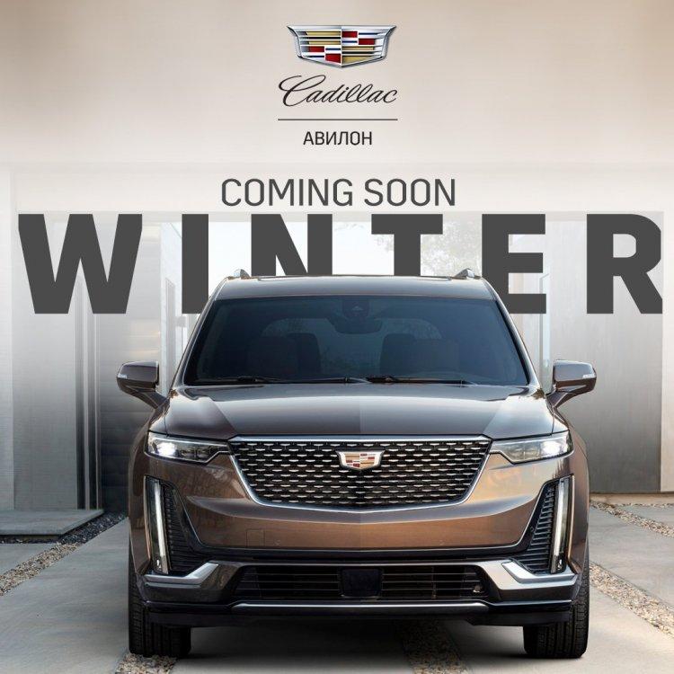 car23401_winter.jpg